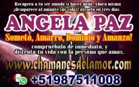 DESTRUYO RELACIONES ANGELA PAZ +51987511008, referencia: 459-ho