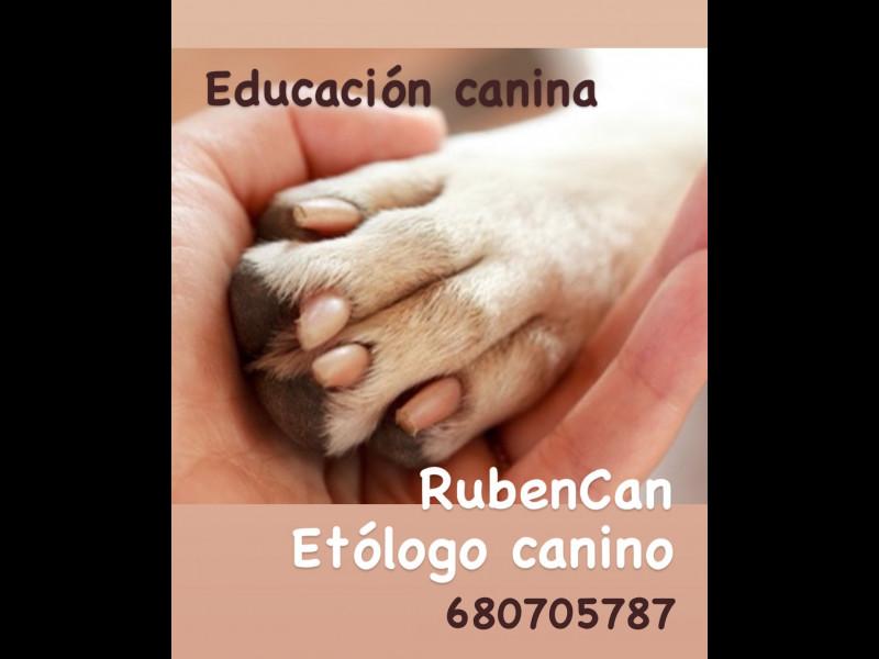 Educador canino , vista 3