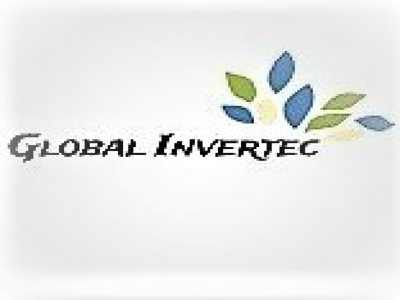 Global Invertec, vista 1