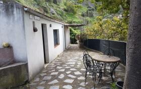 Ver las fotos y detalles, de finca en La Orotava, Tenerife. ref.: 1187-v-fi