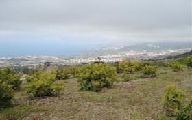 Ver las fotos y detalles, finca de  en Los Realejos, Tenerife. ref.: 173-v-fi