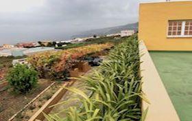 Ver las fotos y detalles, finca de  en La Orotava, Tenerife. ref.: 602-v-fi