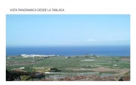 Ver las fotos y detalles, de finca en Guía de Isora, Tenerife. ref.: 802-v-fi