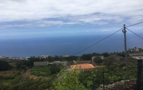 Ver las fotos y detalles, de finca en Icod de los Vinos, Tenerife. ref.: 950-v-fi