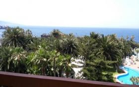 Ver las fotos y detalles, estudio de  en Puerto de la Cruz, Tenerife. ref.: 954-vac-st