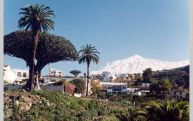 Ver las fotos y detalles, casa rural de  en Icod de los Vinos, Tenerife. ref.: 994-vac-cr