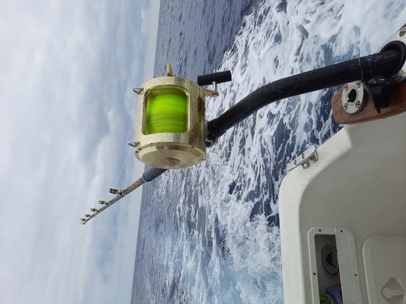 Excursion en barco y pescs, vista 1
